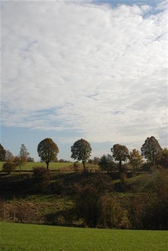 Mausheck-Kolberg