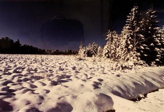 Winterlandschaft im Venn
