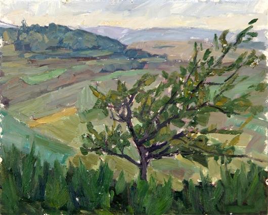 Baum vor einem Tal