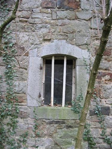 Fenster mit Stichbogenöffnung