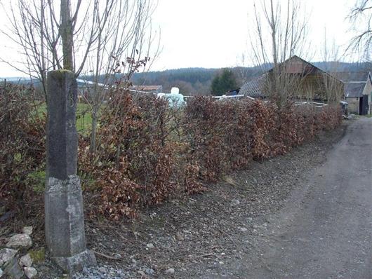 B-O Grenzstein Nr. 99