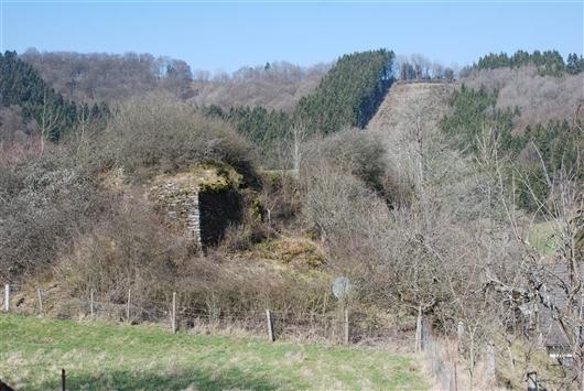 Mauerreste der Burgruine