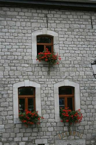 Fenster in Nordfassade