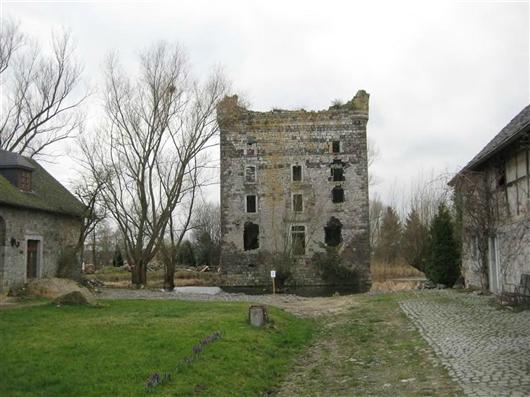 Bergfried mit Wirtschaftsgebäuden