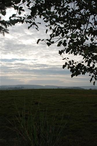 Hügelgräber und Umfeld