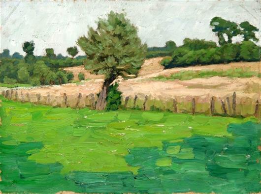 Landschaft mit Zaun und Wiese