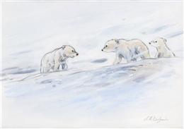 Youri, L´ourson des neiges