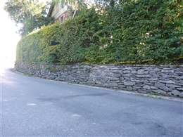 Trockenmauer (Dorfmitte)